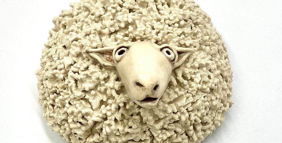 Large Star Gazer Sheep