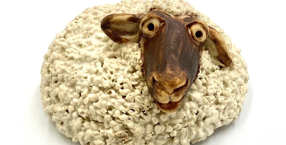 Medium  Happy Sheep