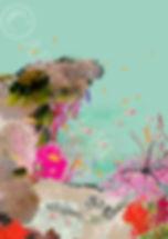 sea turtle webbb.jpg