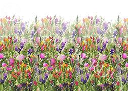 crfinal final garden print.jpg