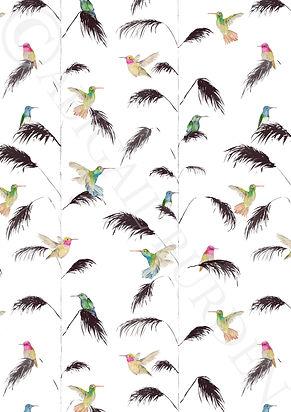 birdsssyyy web.jpg