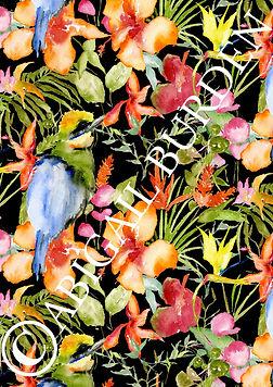 bird copyright.jpg