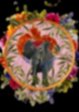 ECCENTRIC_ELEPHANT.png