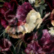 FLORAISON_edited.jpg
