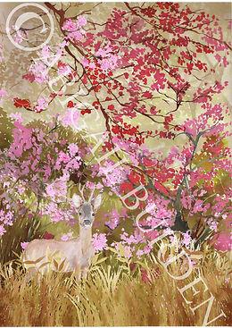 crdeer magnolia landscae 1.jpg