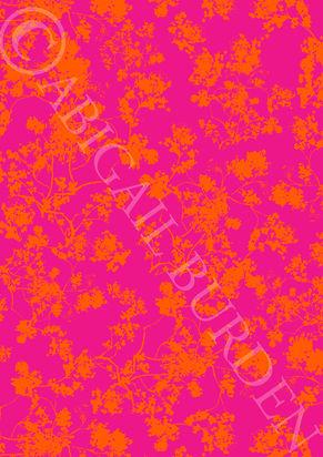 pink orange web.jpg