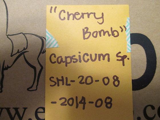 """Capsicum sp. ~ """"Cherry Bomb"""""""