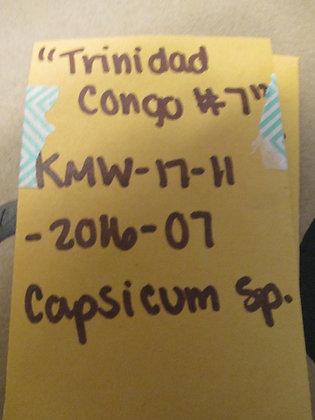 """Capsicum chinense ~ """"Conga #7"""""""