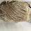 Thumbnail: Victorian Lace Cap