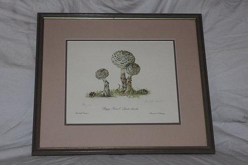 Shaggy Parasol Mushroom Elizabeth Cameron signed print