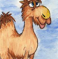 Camel Lips