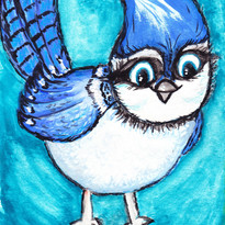 Blue Jay of Happines