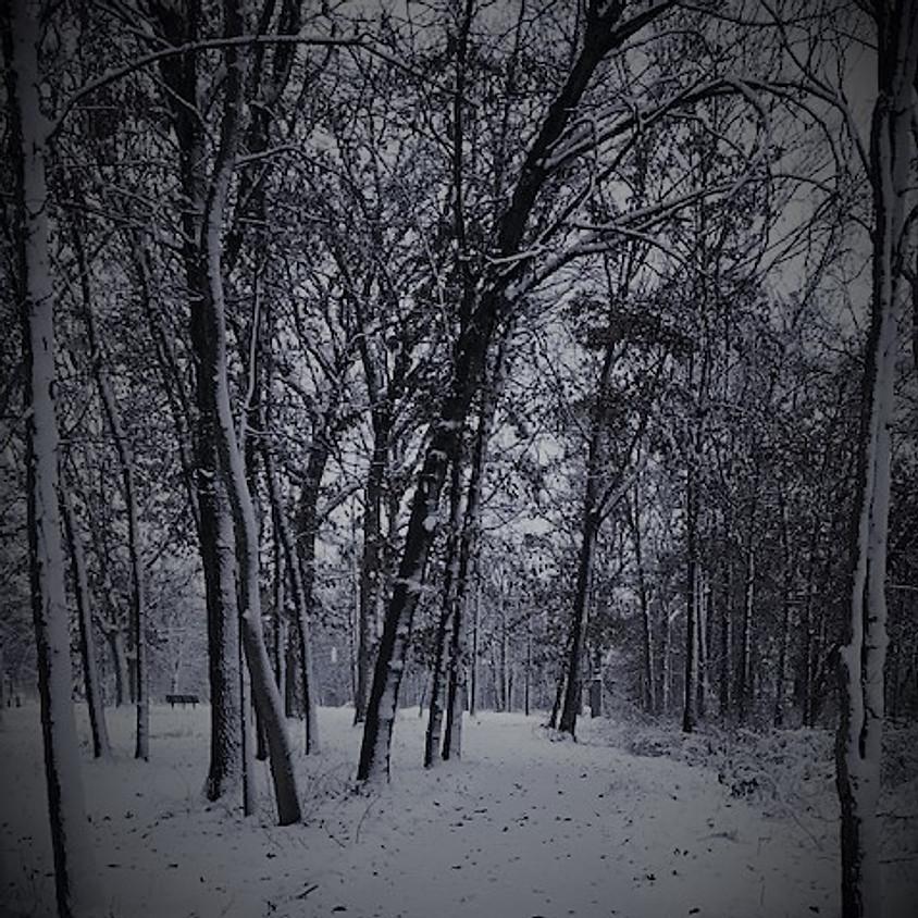 Sound of Stillness - Mini Retreat
