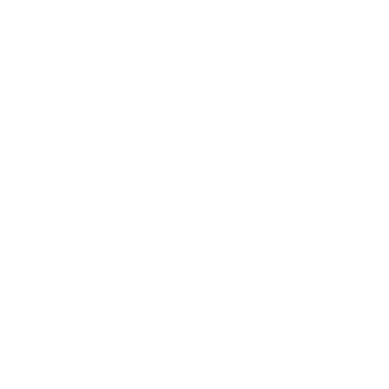 Prime Sports White Logo.png