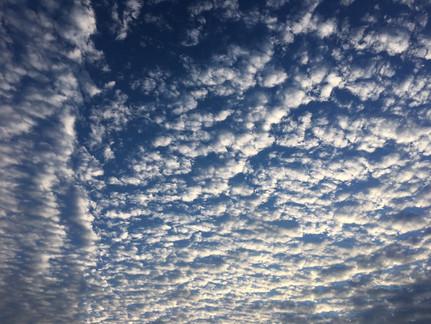 今朝の名護の空