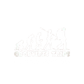 Logotipo-OFICIAL-Goodvibes-trips-(BRANCO