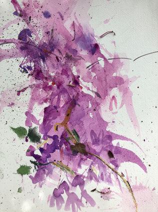 Purple Rhode