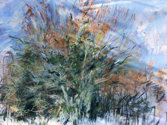 'The Bright Tree', Eastham Marshes