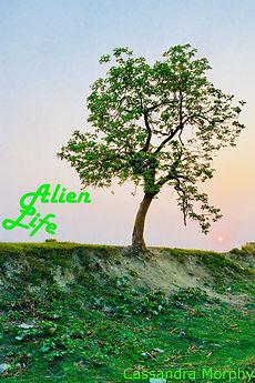Alien Life Cover.jpg