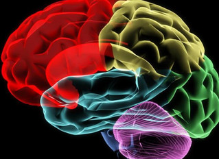 Go from 'Monkey Mind' to 'SUPER Brain' with Nia, by Jule Aguirre, M.Ed., LPC, NCC, Nia Black Belt So