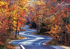 curvy road in the fall.jpg