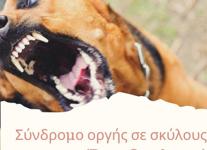 Σύνδρομο οργής σε σκύλους (Rage Syndrome)