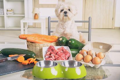 Natural-food-for-pets-at-home.jpg