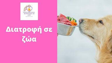 Διατροφή σε ζώα.jpg