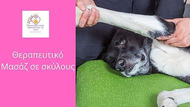Θεραπευτικό Mασάζ σε σκύλους.jpg