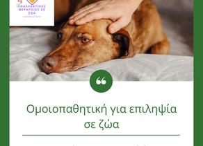 Ομοιοπαθητική για επιληψία σε ζώα