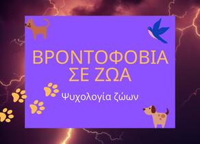 Βροντοφοβία σε ζώα