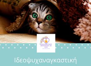 Ιδεοψυχαναγκαστική διαταραχή (OCD) στις γάτες