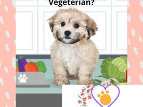 Μπορεί ο σκύλος μου να γίνει Vegeterian?