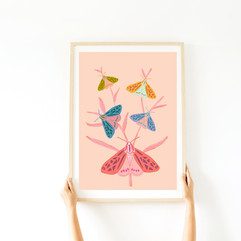 buterflys print .jpg
