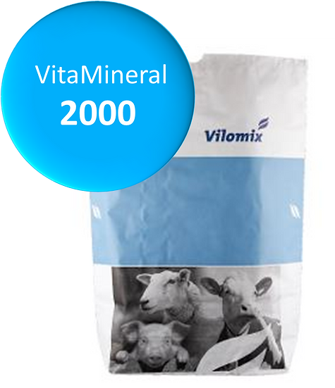VitaMineral® 2000