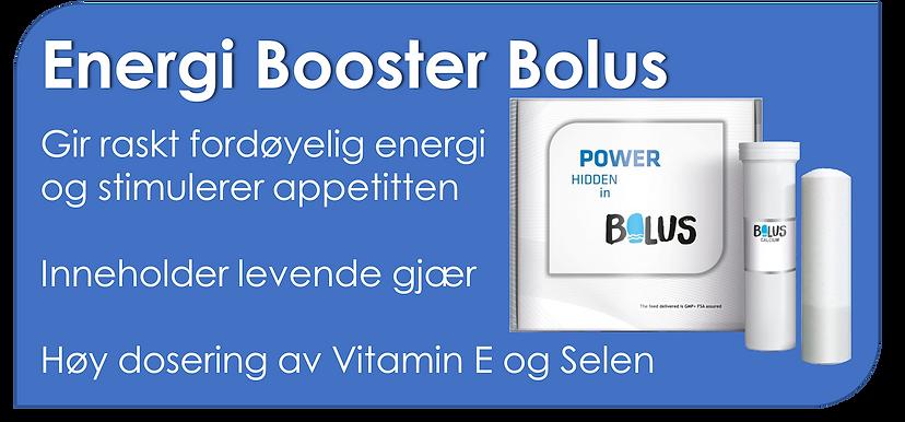 energi bolus.png