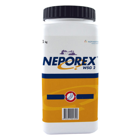 Neporex 2 WSG 1 KG