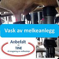 vask av melk.png