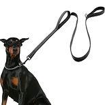 Dog-Leash-2-Handles-Black-Nylon-Padded-D