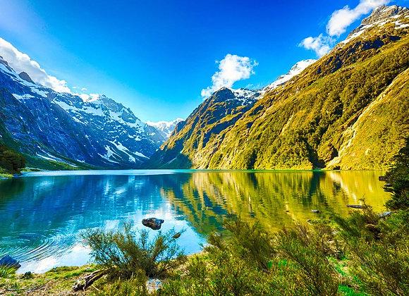 North NEW ZEALAND