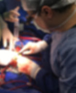 coronary bypass operation, CABG, koroner bypass ameliyatı