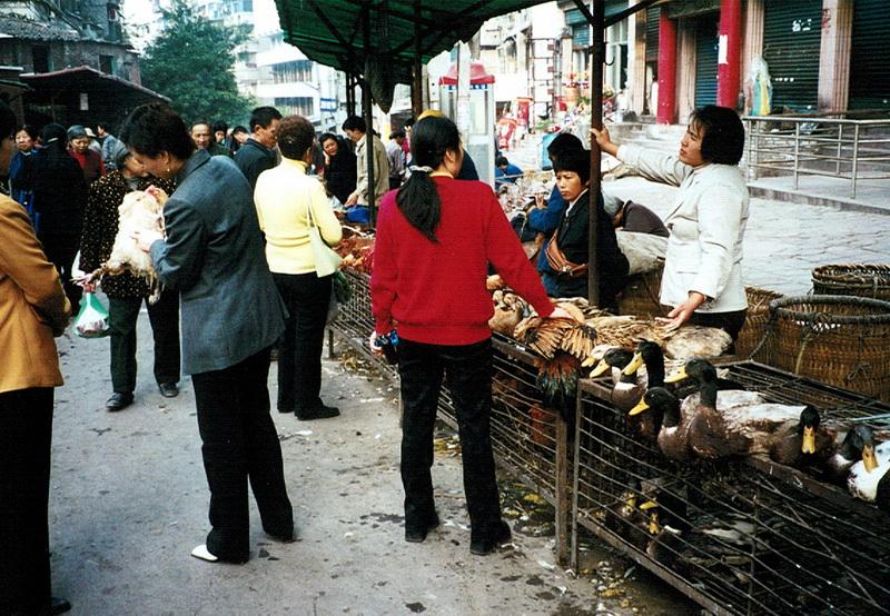 china136.jpg