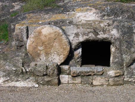 Résurrection (7)