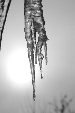 DSC_1080-melting ice with sun.jpg