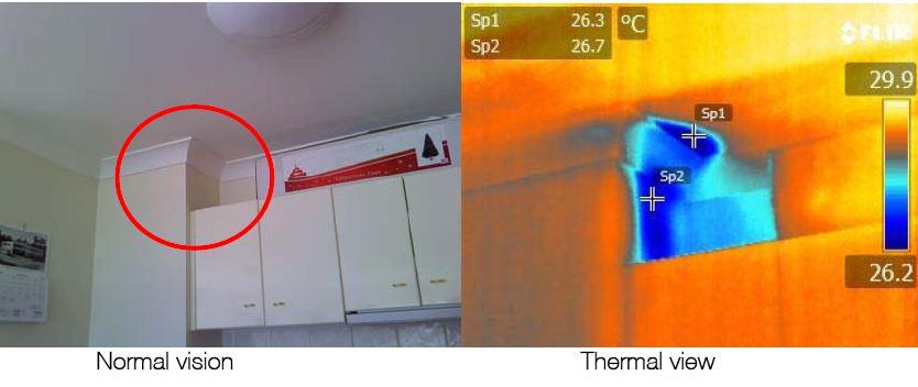 Kitchen-Ceiling-Moisture-Damage.jpg