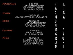 Harmonogram treningów (9).png