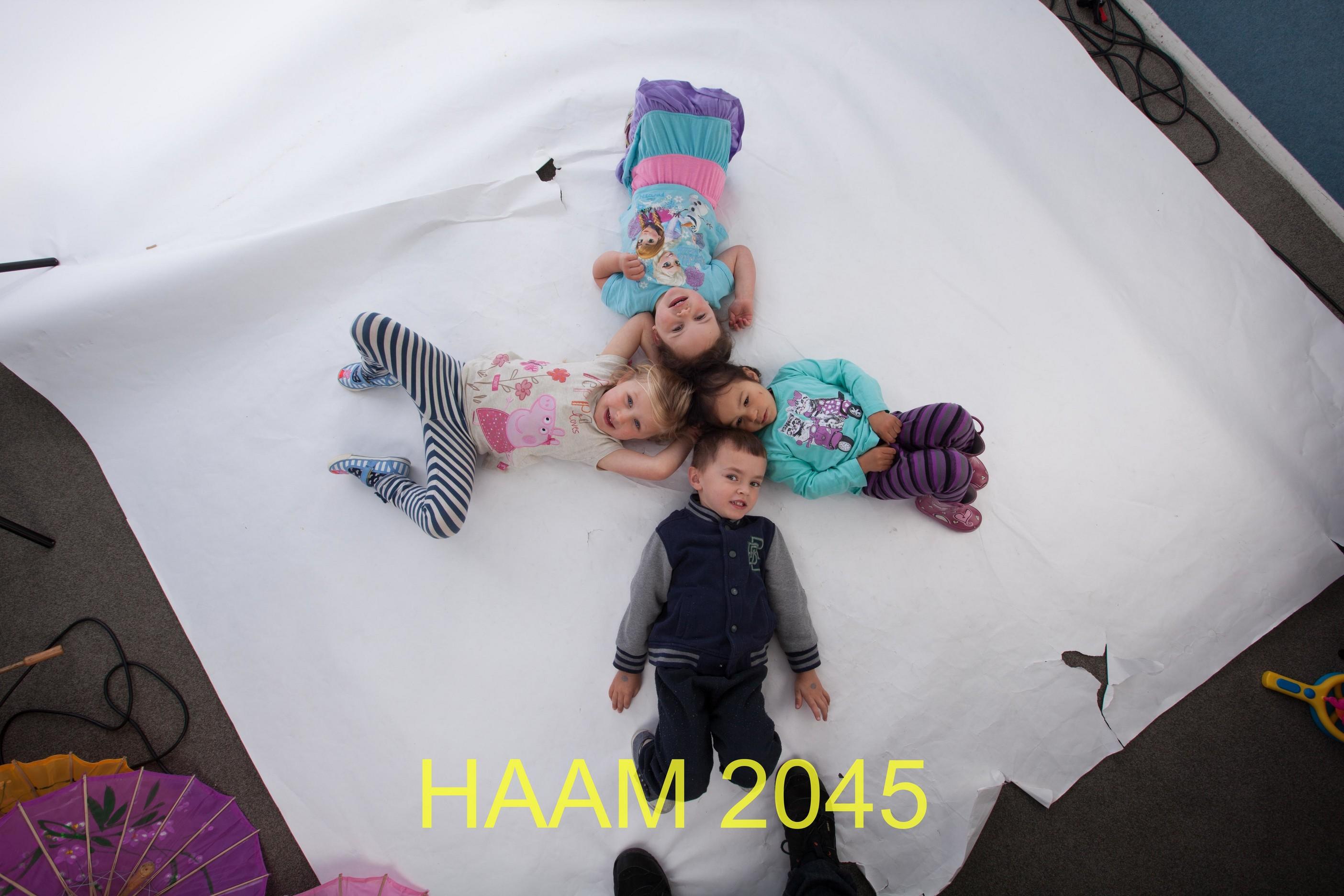 HAAM 2045