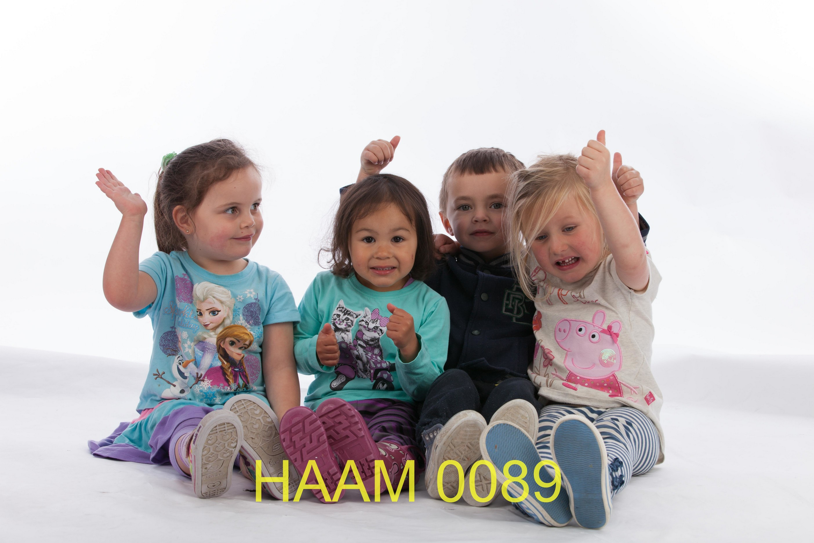 HAAM 0089