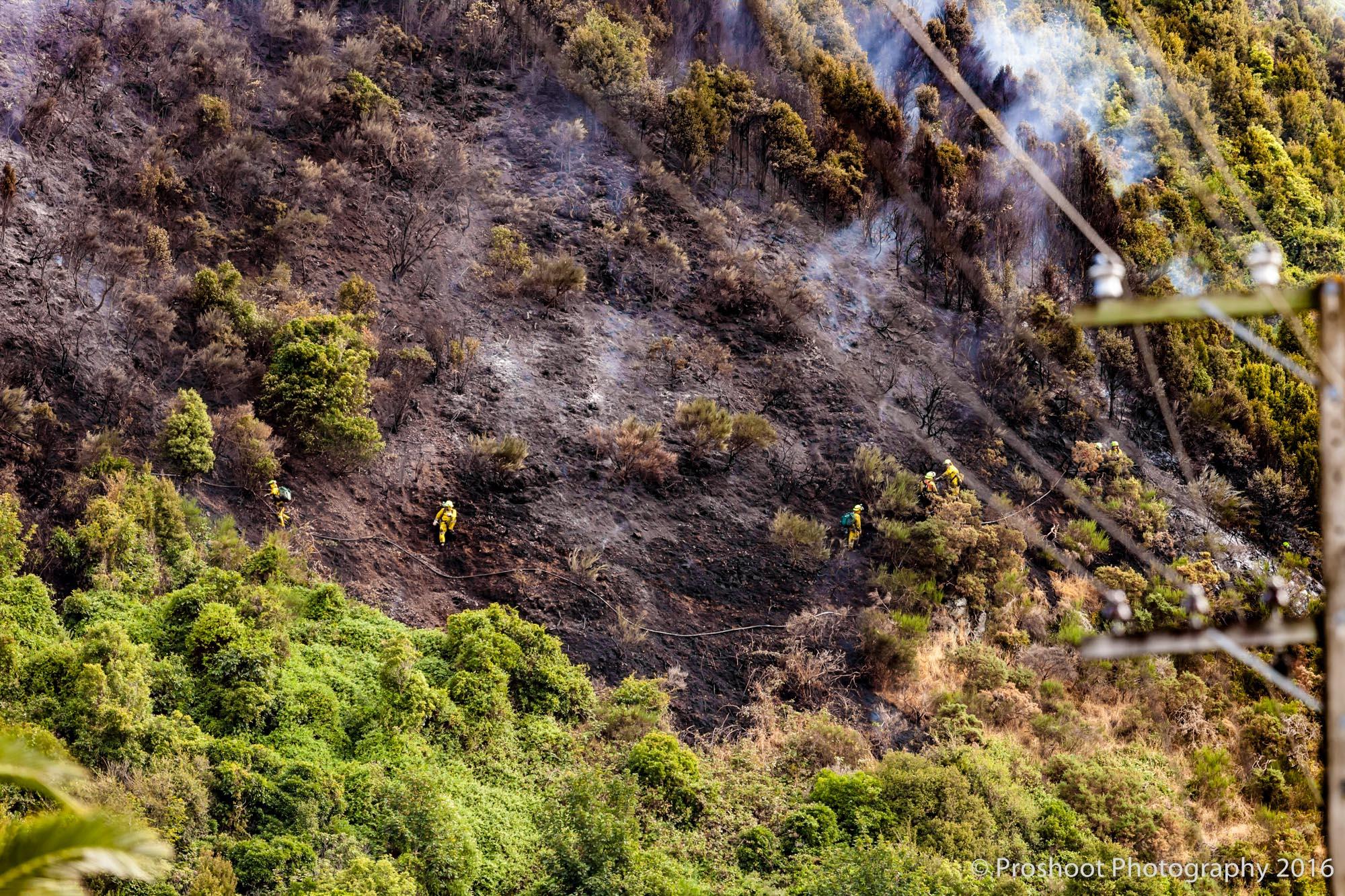 Te Marua Rural Fire 9037