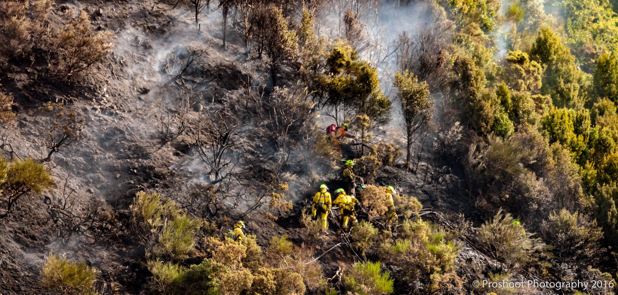 Te Marua Rural Fire 9092